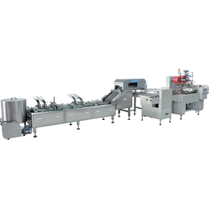Fully Automatic Sandwiching And On-edge Packing Machines